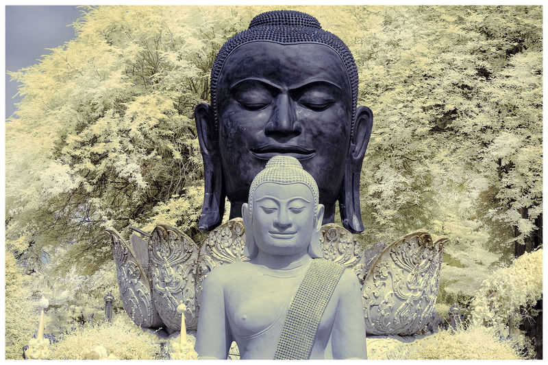ิีbuddha
