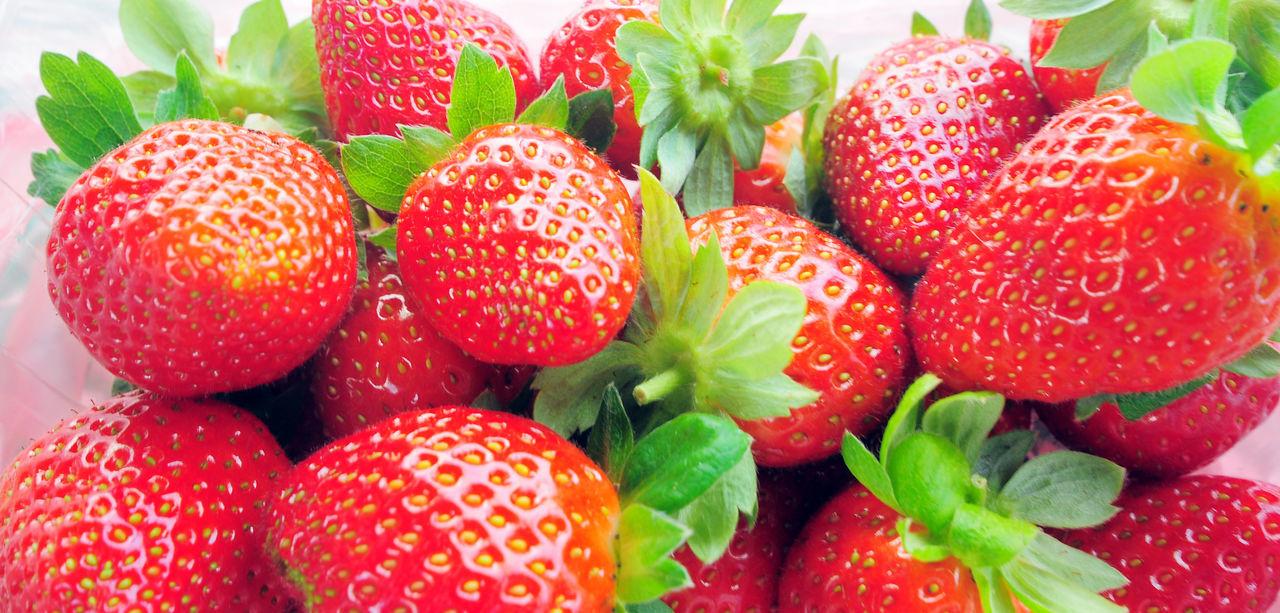 Panoramic Shot Of Strawberries