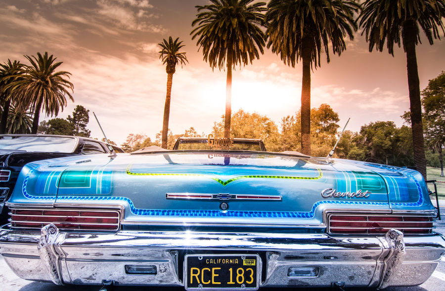 California Elysian Park Los Angeles, California Low Rider  Low Riders Palmtree Sunset West Coast