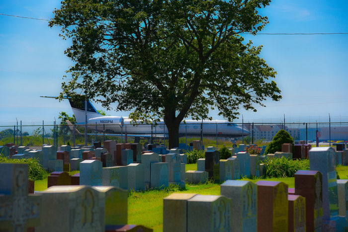 Airplane All Aboard Cemetery Colors Coming Or Going Headstones Large Group Of Objects Tree