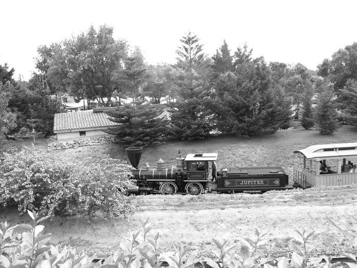 Catalunya Taking Photos Blackandwhite Photography Old-fashioned Steam Trains Portaventura The Wild West Theme Park Salou Spain