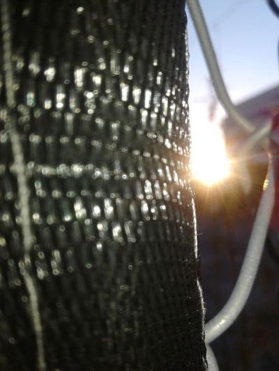 Sunlight Macro Fence Sunset