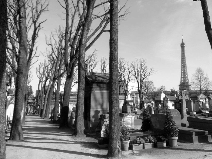 Black & White Black And White Blackandwhite Blackandwhite Photography Cemetery Cimetiere Eiffel Tower Eiffel Tower♥ Grave Paris ❤ Tour Eiffel