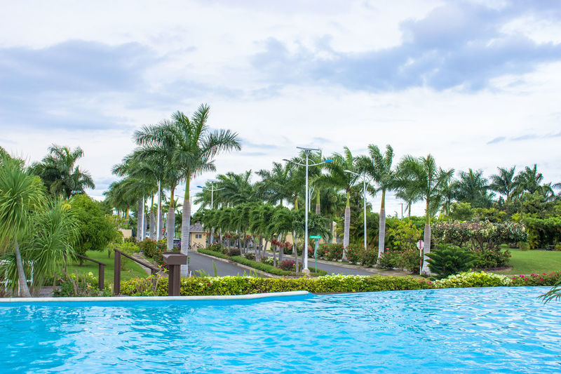 Summer by the Poolside. Canonphotography CanonRebel Destination Idyllic Outdoors Palm Tree Pool Poolside Relaxation Sky Summer Swimming Swimming Pool Tourist Travel Vacation Time Water
