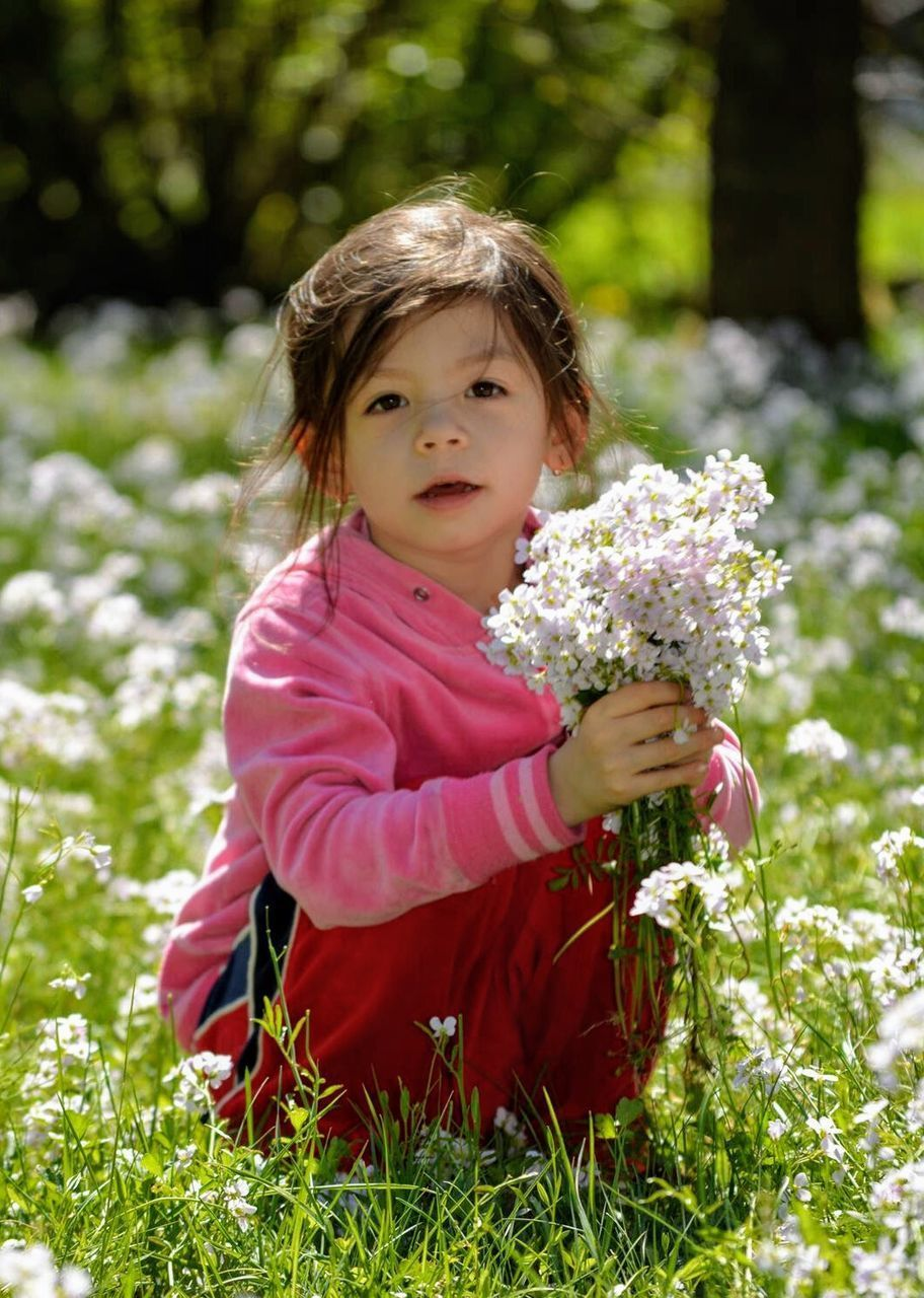 childhood, plant, child, portrait, one person, looking at camera, flower, flowering plant, innocence, girls, grass, nature, cute, sitting, smiling, women, day, females, offspring, pink color, springtime, outdoors, hairstyle