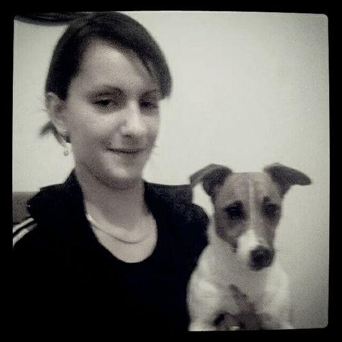 Chien Jackrussell Jackrussellterrier Dog Love Mon gros branleur ?