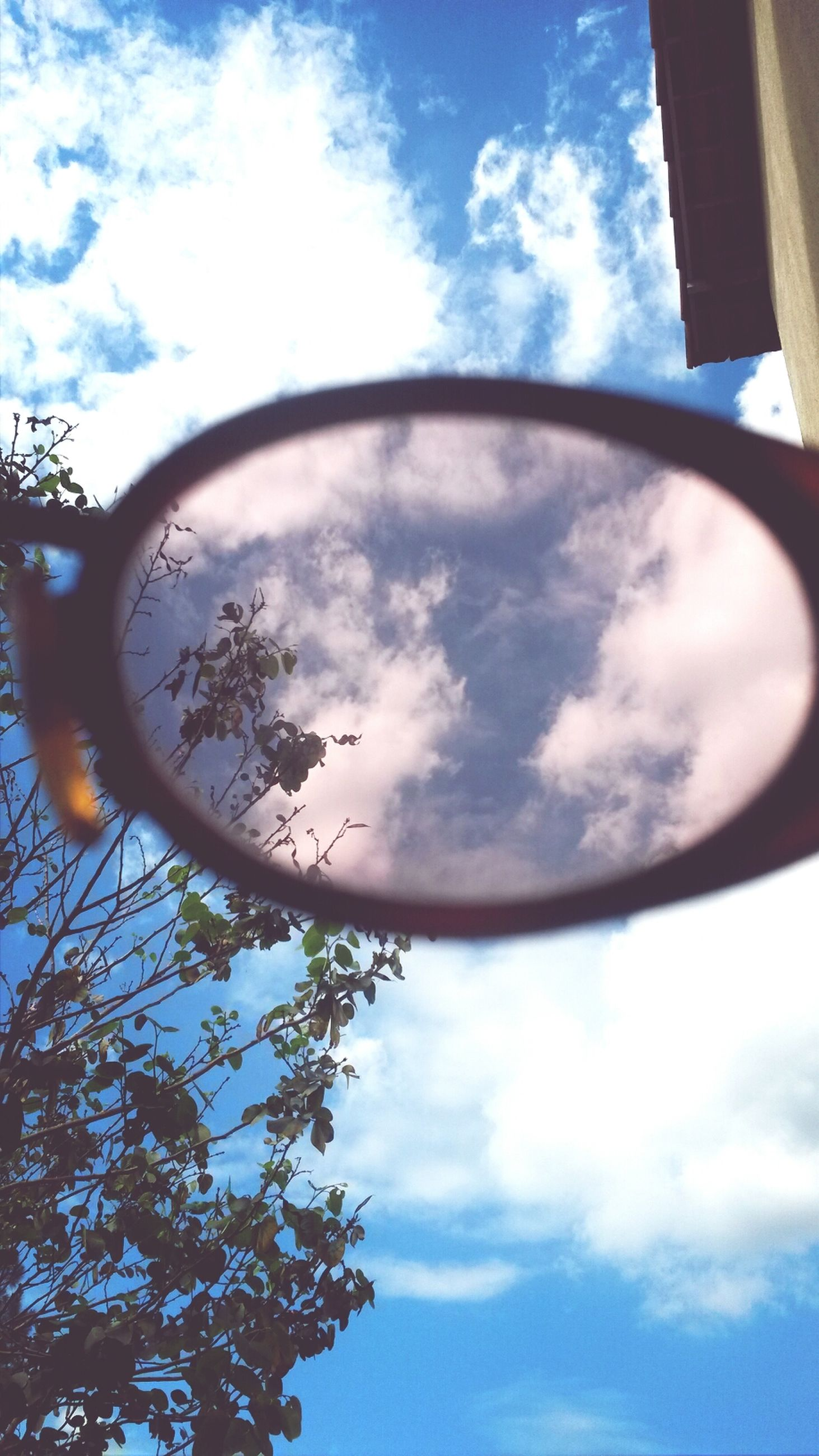 low angle view, sky, cloud - sky, built structure, architecture, cloud, cloudy, tree, building exterior, glass - material, day, circle, directly below, no people, reflection, outdoors, blue, street light, nature, sunlight