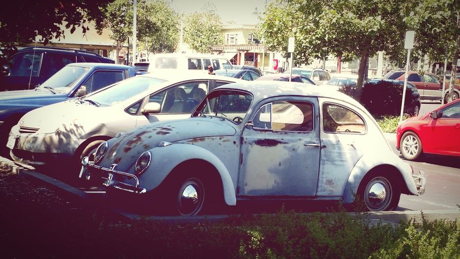 Spotted in Emeryville. Old Car Old School Old Bug Volkswagen Vintage Vintage Cars Antique Cool Car Quick Shot Quick Snap Emeryville Beat Up Car Shade Lieblingsteil Check This Out Capture The Moment California Dreamin