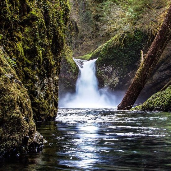 Water Waterfall Forest Waterfront Scenics Motion Tree Beauty In Nature Flowing Water Nature Power In Nature Environment Flowing Tranquil Scene Tranquility Purity Outdoors Non Urban Scene Rock Formation Day