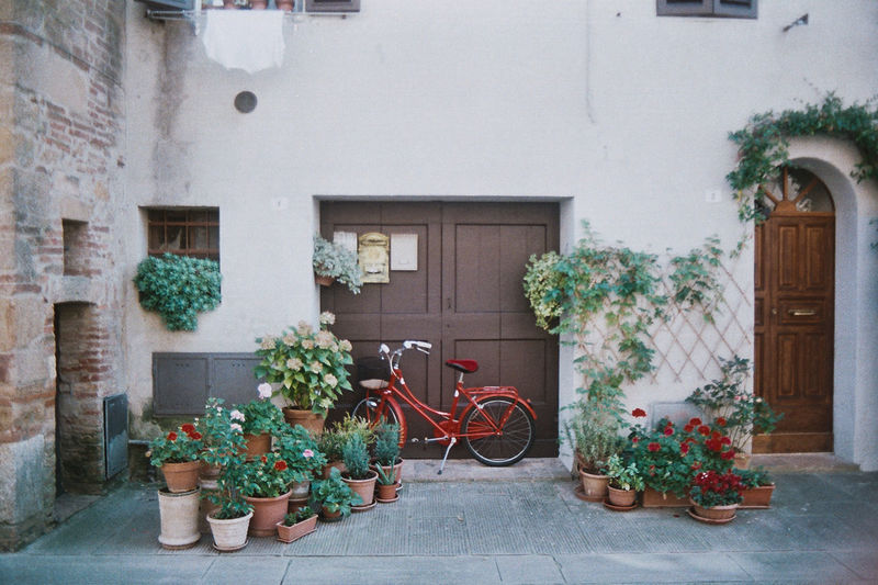 Italian Scene. Bike and Flowers. Travel Travel Photography EyeEm Selects Film Photography 35mm Film Italy Italian Scene Colors Bicycle Front Door Tuscany Summer Red Bicycle Door Potted Plant Architecture Building Exterior Built Structure Plant Stationary Blooming Entrance Closed Door Entry Parking Rusty Locked