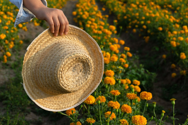 One Person Human Body Part Hand Human Hand Real People Plant Freshness Holding Day Nature Focus On Foreground Close-up Lifestyles Basket Food Hat Unrecognizable Person Flowering Plant Body Part Outdoors Finger Marigold Flower Marigold Marigold Farm