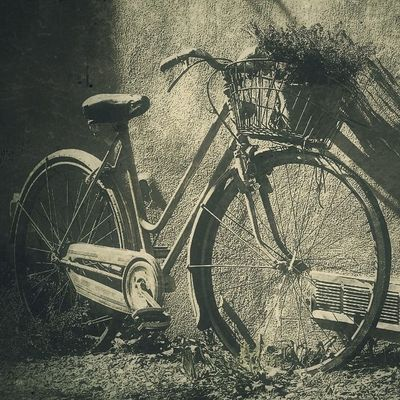 come in ride my bicycle