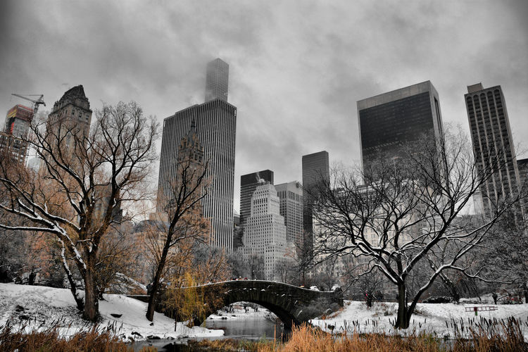 Nikon OpenEdit USA Famous Place New York City New York Central Park Winter Snowing United States City Urban Skyline Skyscraper Architecture