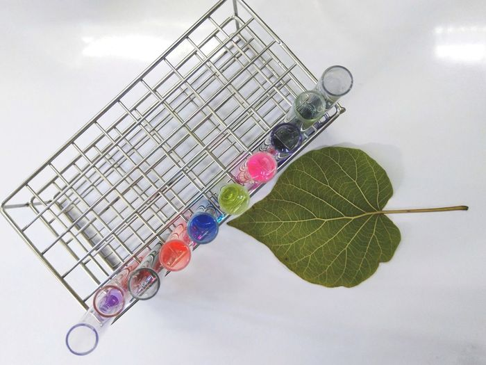 High angle view of colorful liquids in test tubes by leaf on table
