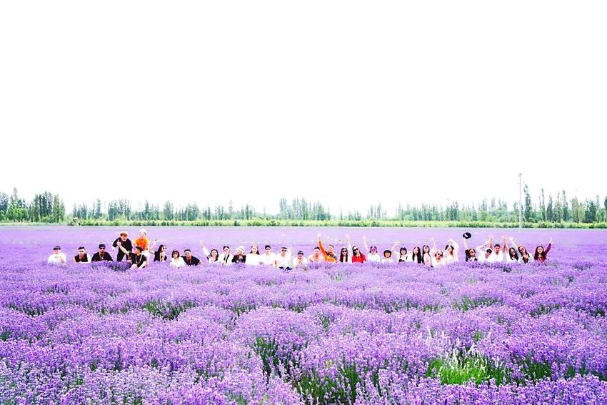 Large Group Of Animals Animal Themes Outdoors Nature Tree Day Beauty In Nature Sky Domestic Animals People Flower Mammal Adult