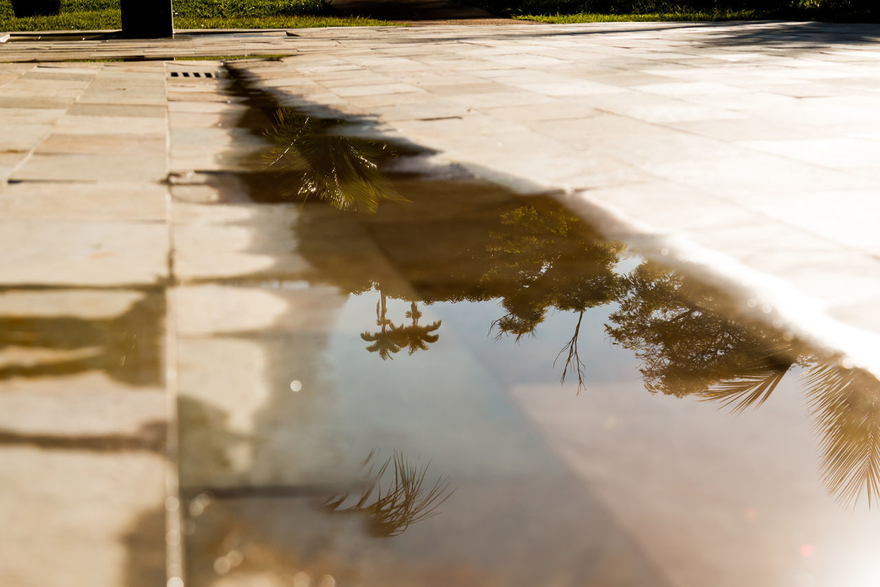 Reflection Of Trees In Puddle On Footpath