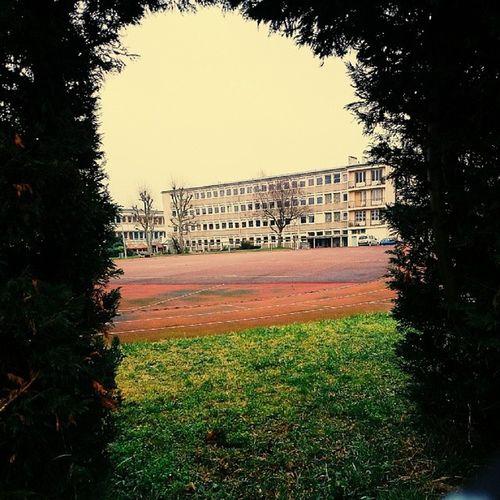 LycéeVanGogh Ermont France