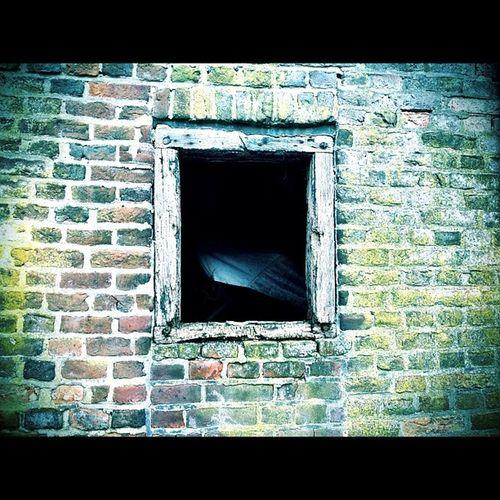 #brick #brickstalker#brickoftheday#bricks #bricklover #urbex #igersholland #igville #urban #urbandecay #decay #urbanexploration #igtrespasser #abandoned #derelict #dope #jj #yolo #instago #urbanexploration#insta_album #filthyfeeds#photowall #building Urbanexploration Instago Urban Jj  Abandoned Brickstalker Derelict Igaddict Brick Hdrspotters Decay Royalsnappingartists Photowall Igersholland Buildings Igtrespasser Yolo Photoport Bricks Igville Urbex Insta_album Iphonesia Brickoftheday DOPE Bricklover Urbandecay Filthyfeeds