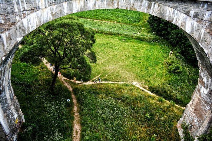 Tree Architecture Bridge - Man Made Structure Outdoors Beidge