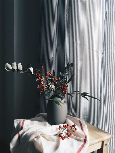 moody scene with red cherry flowers Indoors  Flower Plant Vase Flowering Plant No People Table Nature Curtain Freshness Home Interior Decoration Wall - Building Feature Still Life Growth Potted Plant Textile Leaf Furniture Day Cozy Berries Cherries Winter Moody Sky