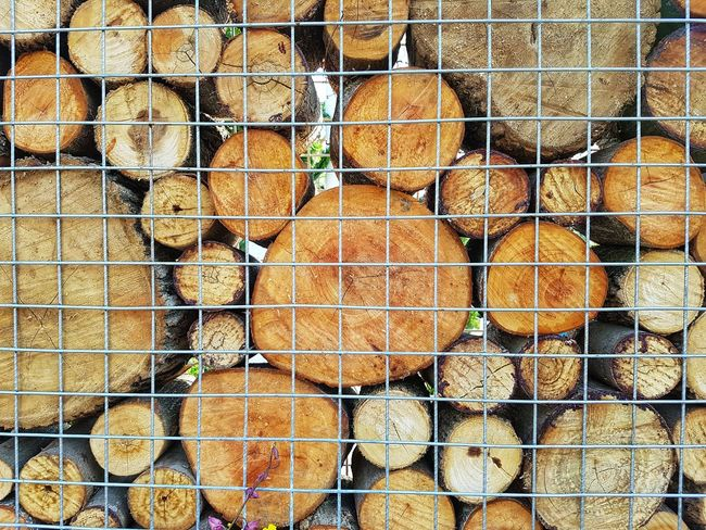 Close up of woods. Wood Pattern Arrangement Backgrounds Full Frame Cage Close-up