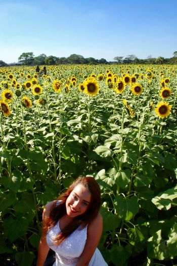 Portrait of smiling young woman on sunflower field against blue sky