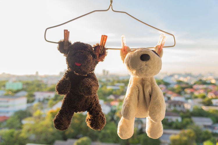 Close-up of stuffed toys hanging on coathanger against sky