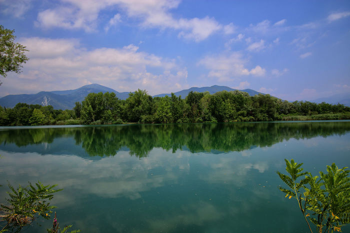 Cloud - Sky Mountain Tree Reflection In The Water Riflessosullacqua Beauty In Nature Reflection Montagne Landcsape Acqua Verde Nature Green Landscape_photography Clouds And Sky Torbieredelsebino Paesaggio Water Torbiere Tranquil Scene Landscape No People