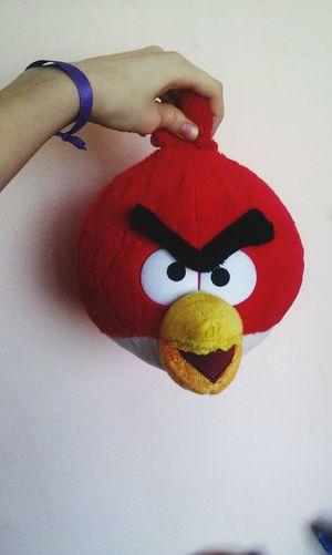 My Bird bird