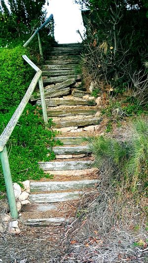 Stairs_steps Stairs_collection Staircases Phoneography Stairways Beachlife Beachphotography Beachlovers Eyemphotography Check This Out Taking Photos Enjoying Life Mother Earth i N South Australia on the Relaxing Yorke Peninsula