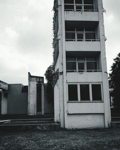 Watch out for the rabbit 🐰. Duisburg Rabbit 🐇 Animals In Town Ruhrgebiet Broken Aechitecture Ruin Structures Blackandwhite Germany🇩🇪 Autumn🍁🍁🍁 2K16 ✌️ Damaged Façade