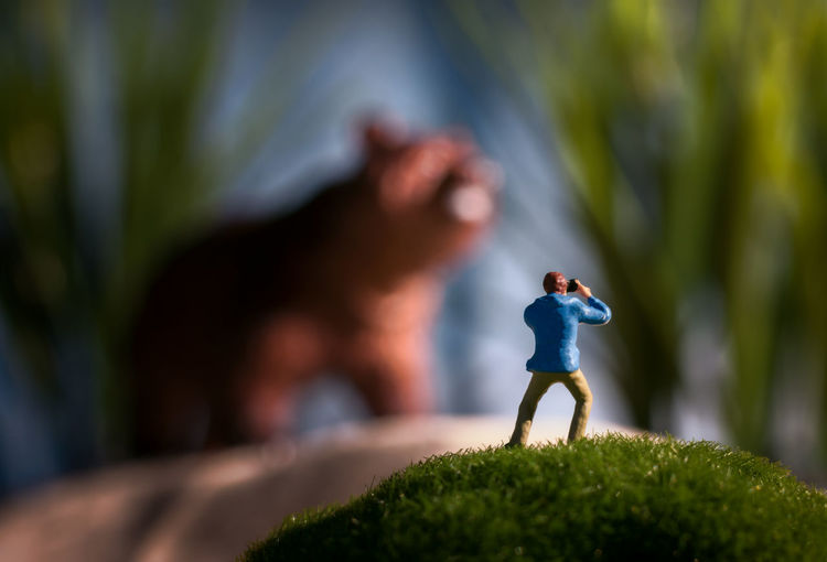 Miniature photographer taking a picture of a huge bear Figure Shallow Depth Of Field Wildlife Photography Close-up Day Figurine  Focus On Foreground Full Length Grass Green Color Leisure Activity Lifestyles Mini People Miniature Miniature People Nature Outdoors Photographer Selective Focus Tree