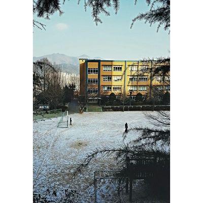 It finally snowed in Busan! ?