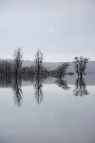 Beauty In Nature Calmness Cold Cold Day Day Lake Landscape Nature No People Nobody Nopeople Outdoors Peace, Love And Weed. Quiet, Peace, Calm, Quietness, Calmness Quietness, Calmness Reflection Sky Tranquility Tranquility, Tree Trees Water Wintertime Wintertime In The Country