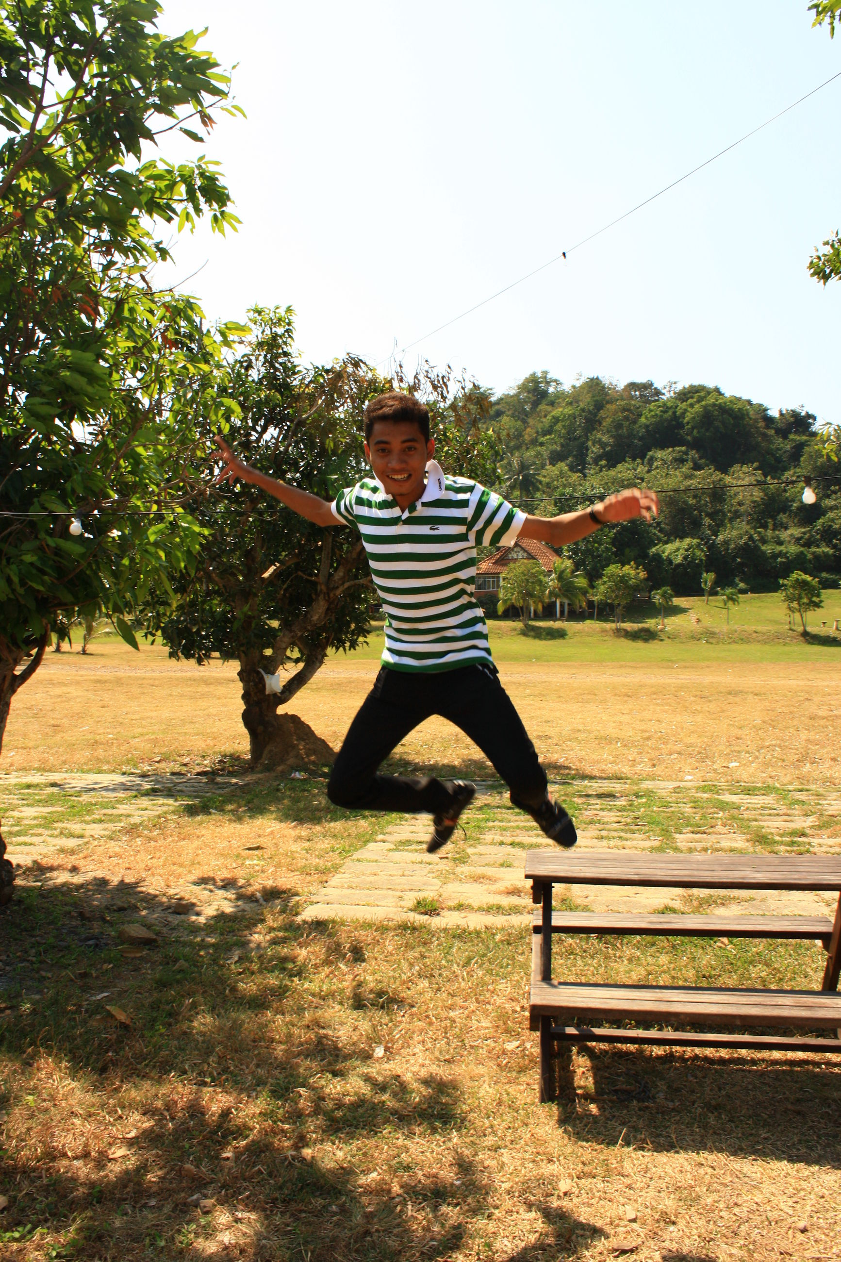 full length, tree, lifestyles, leisure activity, casual clothing, grass, park - man made space, young adult, enjoyment, mid-air, childhood, rear view, arms outstretched, carefree, person, field, fun