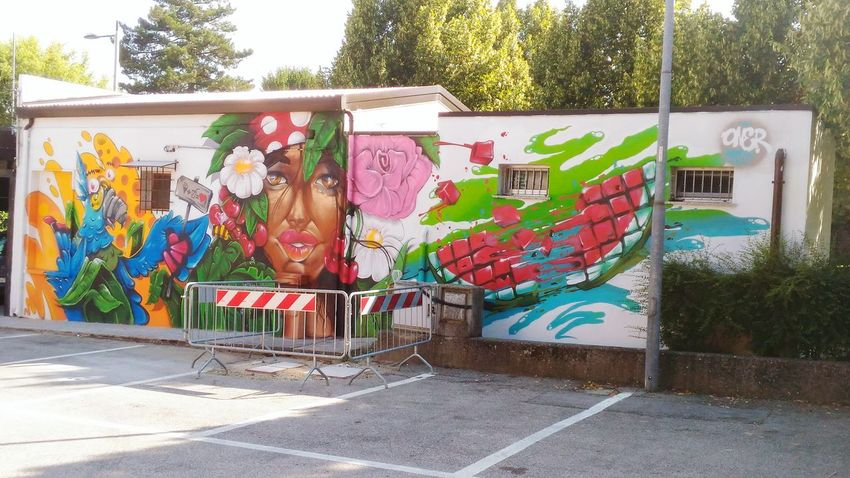 Arte Di Strada Muralesart Multi Colored Street Art Graffiti Architecture Building Exterior Built Structure