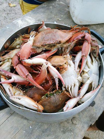 Cangrejo Ciri Cocina Brasil Pesca