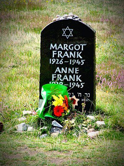 Cementery Gedenkstätte Memorial Worldwar2 Zweiter Weltkrieg Bergen-Belsen Graveyard of Anne Frank Grab