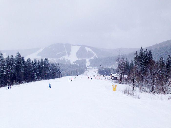 Karpaty Bukovel Winter Карпаты буковель Carpathians
