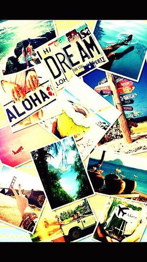 Aloha Dream