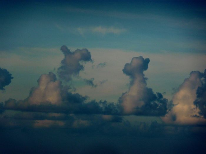 Holiday PNG Look Like Animals Power In Nature Powerful Clouds Take A Look At The Sky Weather Wonderful Day Wowwww💕