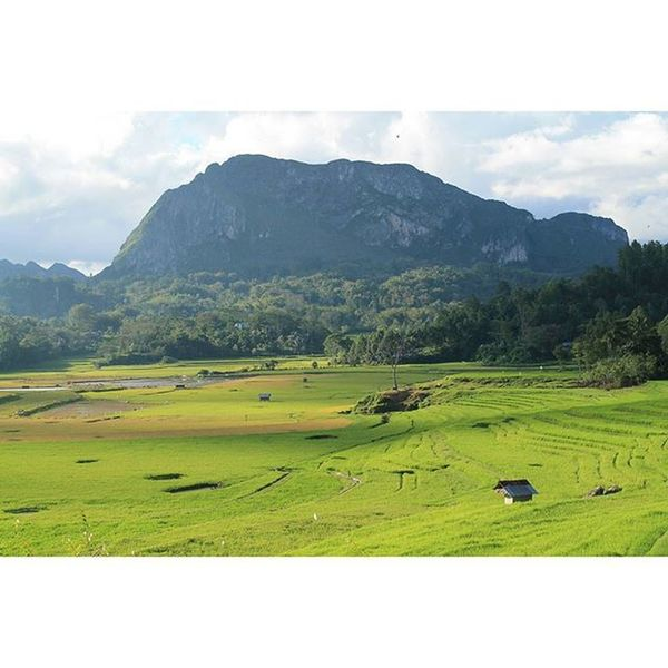 It's probably there are many beautiful places out there.. But this one is still the prettiest for me ...😊😊✌✌ ..and the excess is I don't need to pay for this beautiful scenery.. for free 😊 Home sweet home ... Toraja Mengkendek Home Kandora INDONESIA