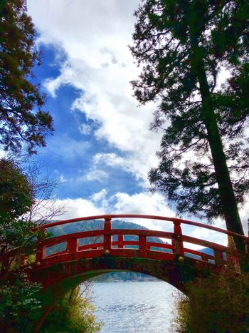 Ashino Lake Hakone Japan Tree Cloud - Sky Sky Built Structure Architecture Day Nature Bridge - Man Made Structure No People Outdoors Low Angle View Water Growth Building Exterior Beauty In Nature