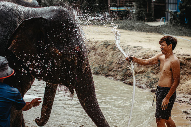 Shirtless man washing elephant with water pipe while standing in lake