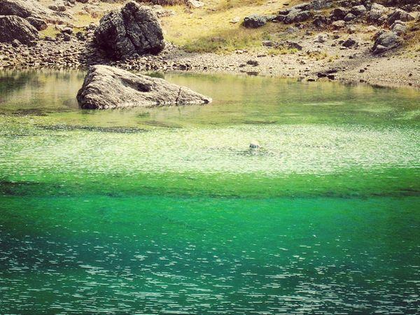 Nova Levante Lago Di Carezza Trentino Alto Adige