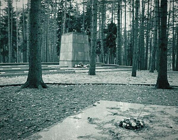 Brezina Trees Memorial Memories Death Cemetery Blackandwhite B & W  Fasizm Stones