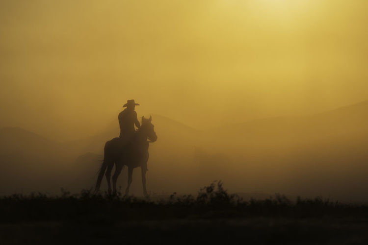Cowboy & The Horse Sunset Sky Animal Themes Riding Domestic Ride Silhouette Horse Animal Nature Orange Color Field Cowboy Silence Turkey