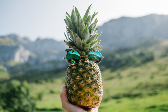 Pineapple Ananas Beauty In Nature Focus On Foreground Freshness Green Color Holding Human Hand Mountain Nature One Person Outdoors People Real People Lost In The Landscape