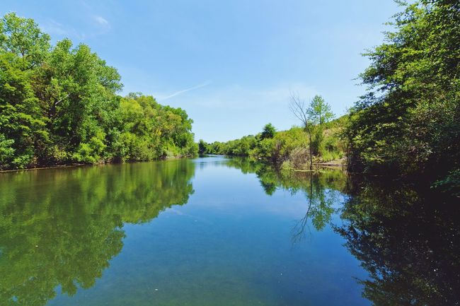 Riverfront Regional Park in Healdsburg, California. California Sonomacounty Landscape Nature