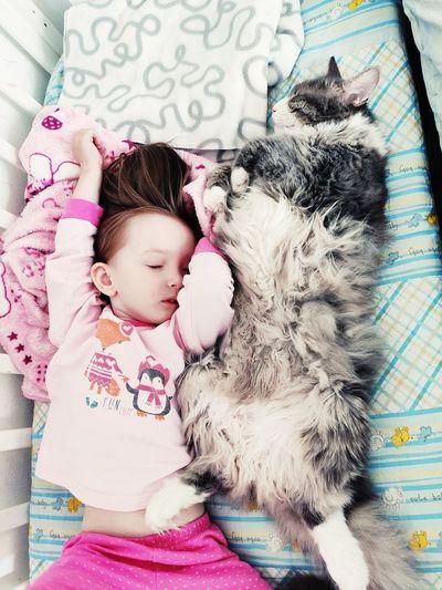 Cute girl sleeping on a cat